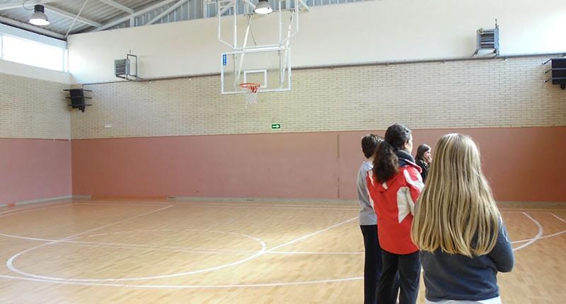 Gimnasio - Instalaciones Colegio El Cantizal Las Rozas